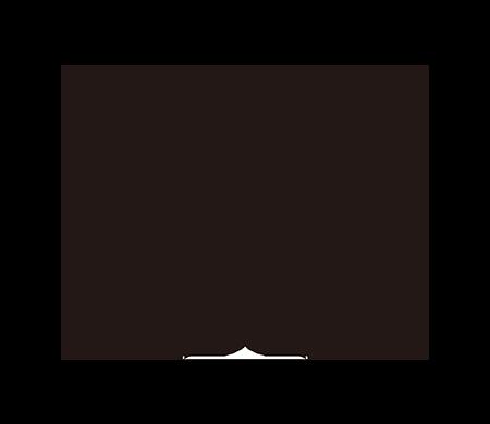 TOC-101SDH