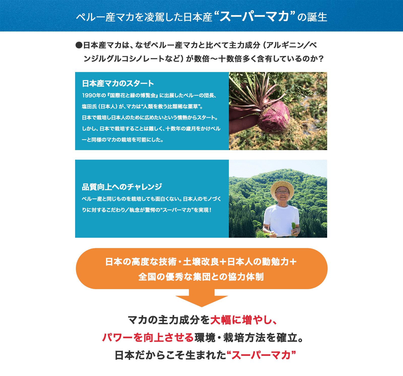 """ペルー産マカを凌駕した日本産""""スーパーマカ""""の誕生"""