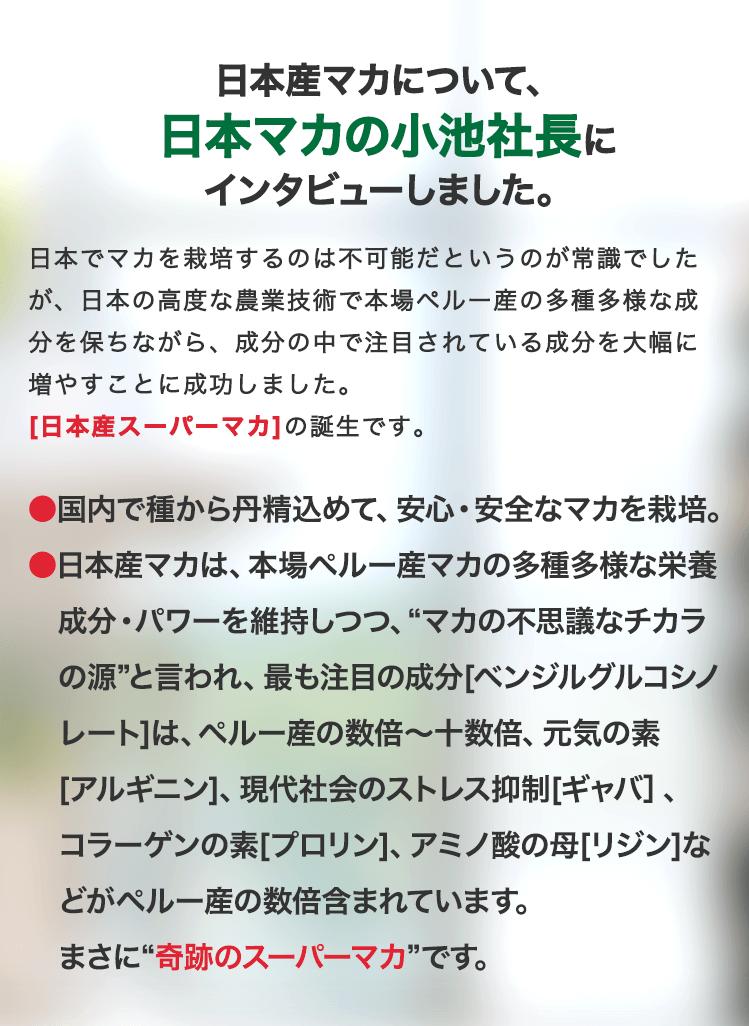 日本産マカについて、日本マカの小池社長にインタビューしました。